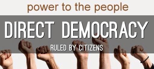 02.direct democracy _ small